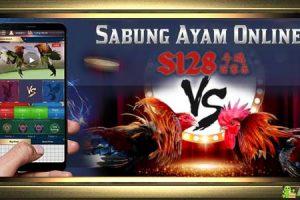 Agen S128 Adu Ayam Online » Terpercaya dan Terbaik